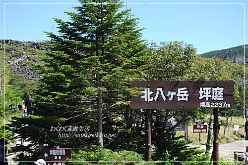 yatugatake-ropeway-10