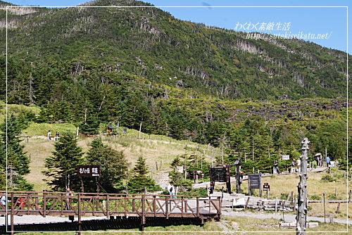yatugatake-ropeway-11