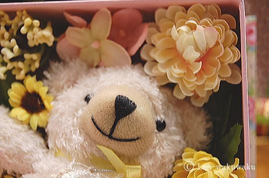birthday-bearbook-5