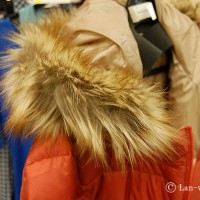 downcoat2014-2